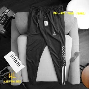 quan-jogger-thun-nam-big-size-2