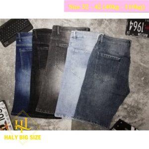 H031-quan-short-jean-nam-big-size-2