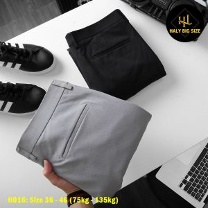 h016-quan-tay-nam-big-size-form-slim-fit-2