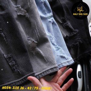 H054-quan-short-jean-big-size-nhieu-mau-1-11
