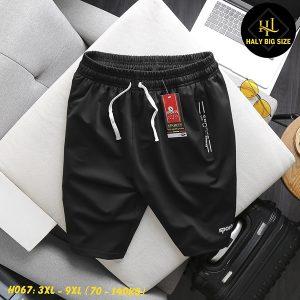 H067-quan-short-thun-nam-big-size-sports-4