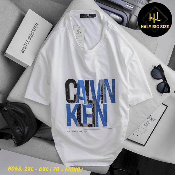 H068-ao-thun-nam-size-lon-1