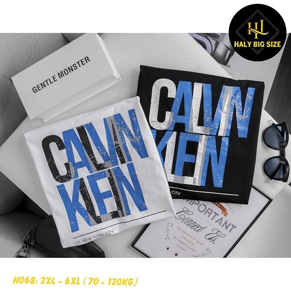 H068-ao-thun-nam-size-lon-2