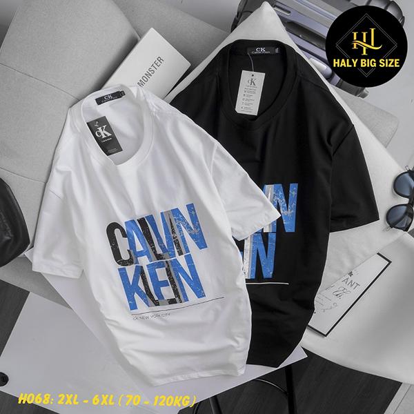 H068-ao-thun-nam-size-lon-3
