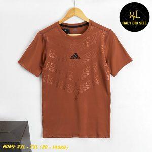 H069-ao-thun-lanh-nam-big-size-2