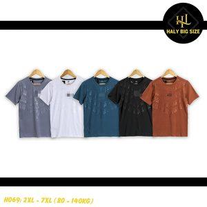 H069-ao-thun-lanh-nam-big-size-4
