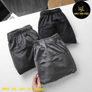 H083-quan-jogger-nam-tron-big-size-14