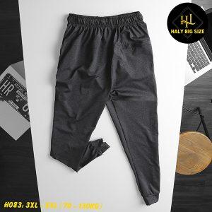 H083-quan-jogger-nam-tron-big-size-7